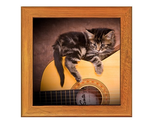 Dessous de plat : Chat sur une guitare