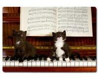 Planche à découper en verre : 2 chatons sur un piano