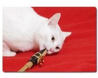 Planche à découper en verre : Chat saxophoniste