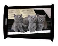 Plateau repas en bois : 4 chatons sur un piano