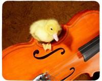 Tapis de souris 23 cm x 19 cm : Caneton sur un violon