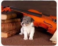 Tapis de souris 23 cm x 19 cm : Chiot entouré d'un violon et de partitions