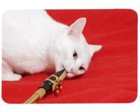 Tapis de souris 27 cm x 20 cm : Chat saxophoniste