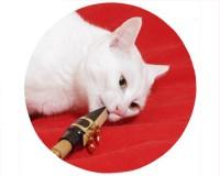 Tapis de souris rond : Chat saxophoniste