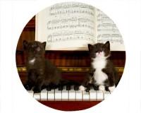 Tapis de souris rond : 2 chatons sur un piano