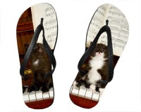 Tongs 2 chatons sur un piano