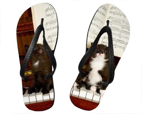 Tongs 2 chatons sur un piano