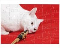 Puzzle Chat saxophoniste