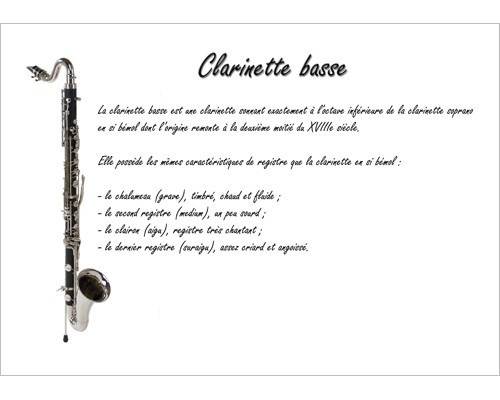 Poster éducatif : la clarinette basse