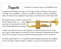 Poster éducatif : la trompette