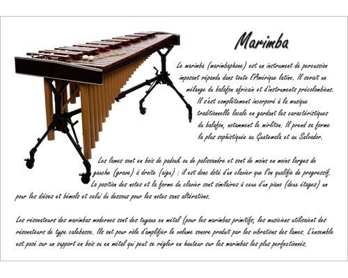 Poster éducatif : le marimba