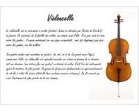 Poster éducatif : le violoncelle